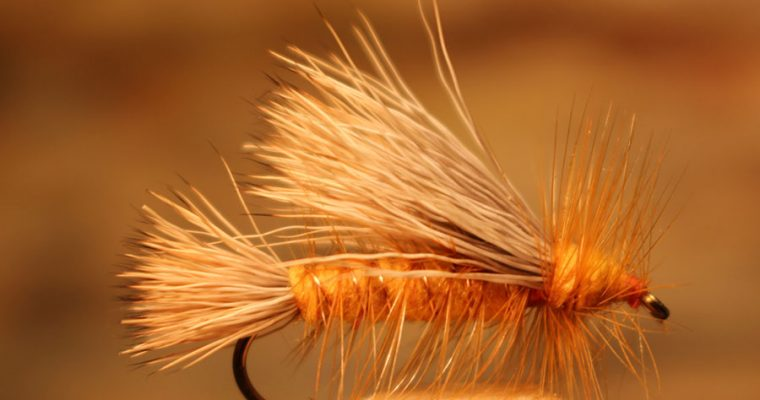 Golden Stonefly Stimulator